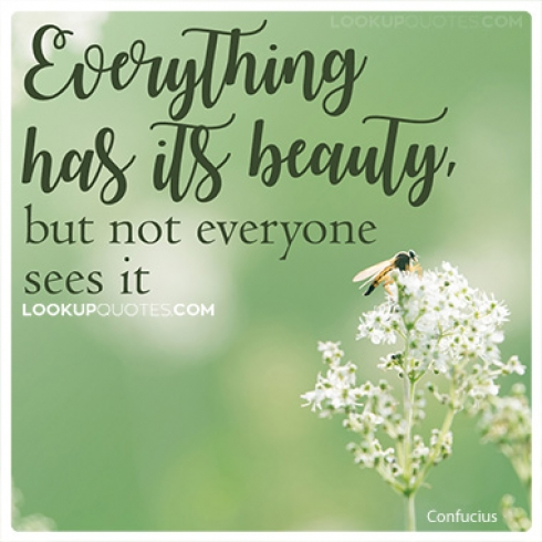 Everything has its beauty, but not everyone sees it