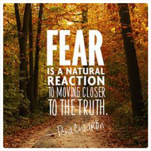 Fear is a natural reaction to moving closer to the truth.