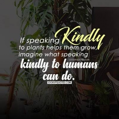 If speaking kindly to plants helps them grow, imagine what speaking kindly to humans can do.