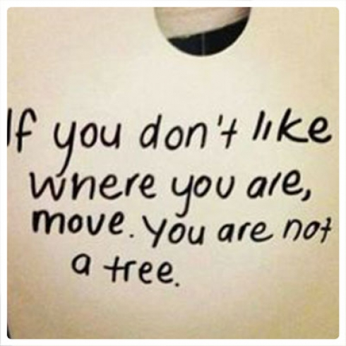 If you don't like where you are move you're not a tree.