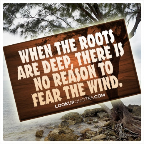 When the roots are deep, there is no reason to fear the wind quotes